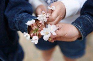 桜と三人の手